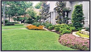 Chula Vista Lawn Landscape Design